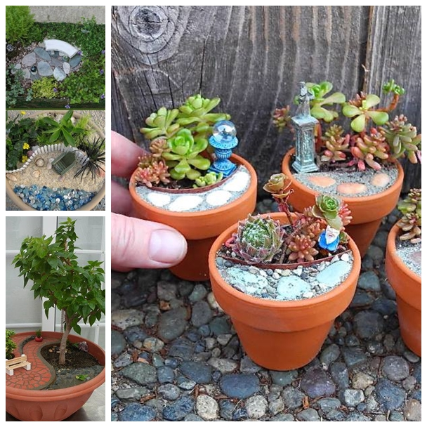 Diy Garden Succulent Balls Beautiful Garden Accessories