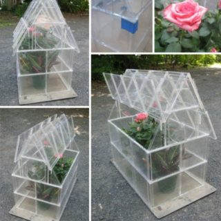 Wonderful DIY Greenhouse From CD Case