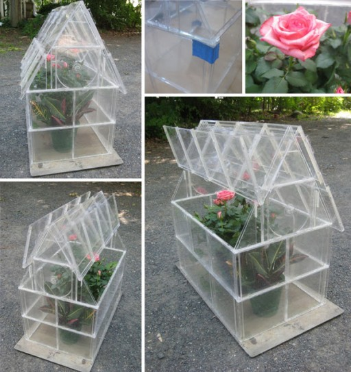 CD Case Greenhouse Wonderful DIY Greenhouse From CD Case