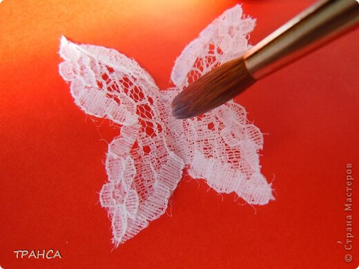 Lace-Butterfly-5