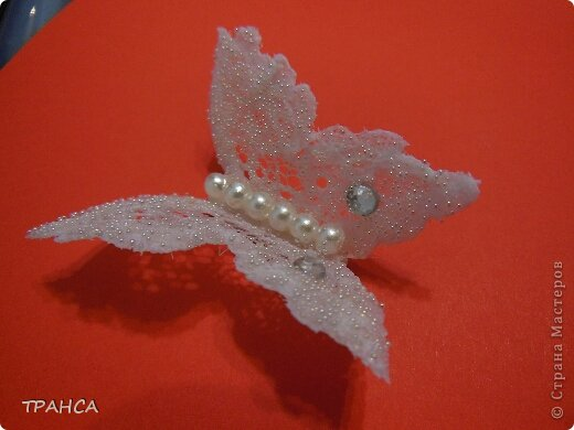 Lace-Butterfly-8