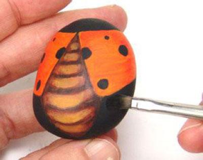 Rock Ladybug9-4