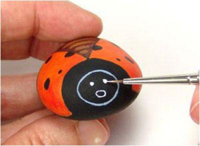 Rock Ladybug9-5