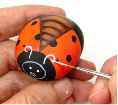 Rock Ladybug9-6