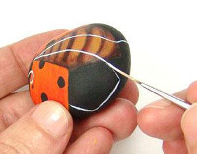 Rock Ladybug9-7