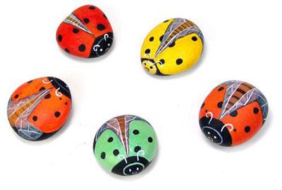 Rock Ladybug98