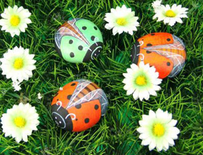 Rock Ladybug99