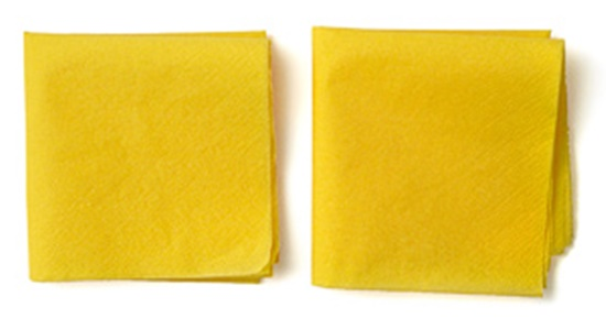Tissue-Paper-Flowers-03