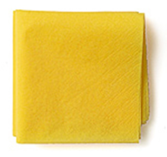 Tissue-Paper-Flowers-04