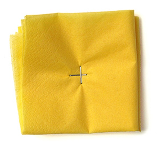 Tissue-Paper-Flowers-06