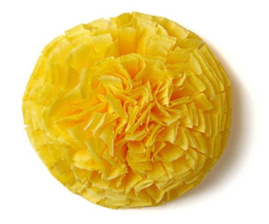 Tissue-Paper-Flowers-12