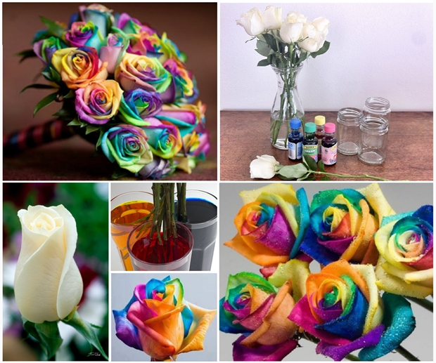 Wonderful diy paper roses from old book pages view in gallery rainbow roses f mightylinksfo