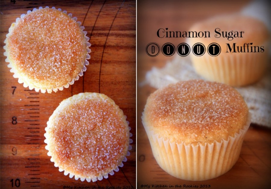 Cinnamon Sugar Donut Muffins wonderfuldiy Wonderful DIY Yummy Cinnamon Apple Rings