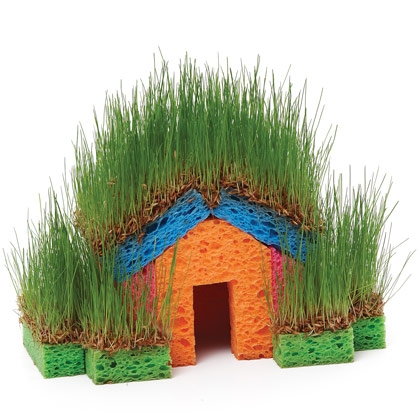 Grass sponge house kids project Educational DIY Mini Grass Houses for Kids
