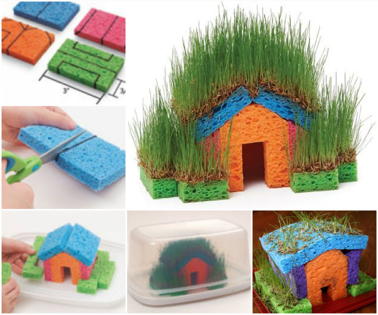 Little Grass House Educational DIY Mini Grass Houses for Kids