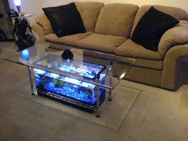 Spectacular diy fish tank coffee table free guide and tutorial - Fish tank dining room table ...