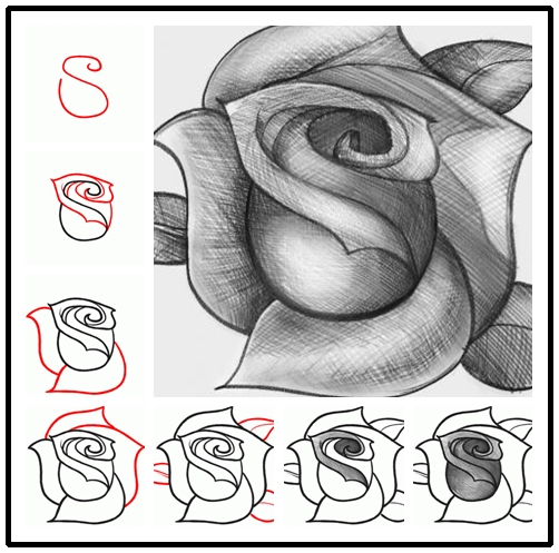 How-to-Draw-a-Rose-DIY