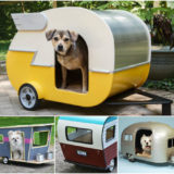 Wonderful DIY Adorable Pet Camper House