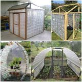 Wonderful DIY Plastic Bottles Green House