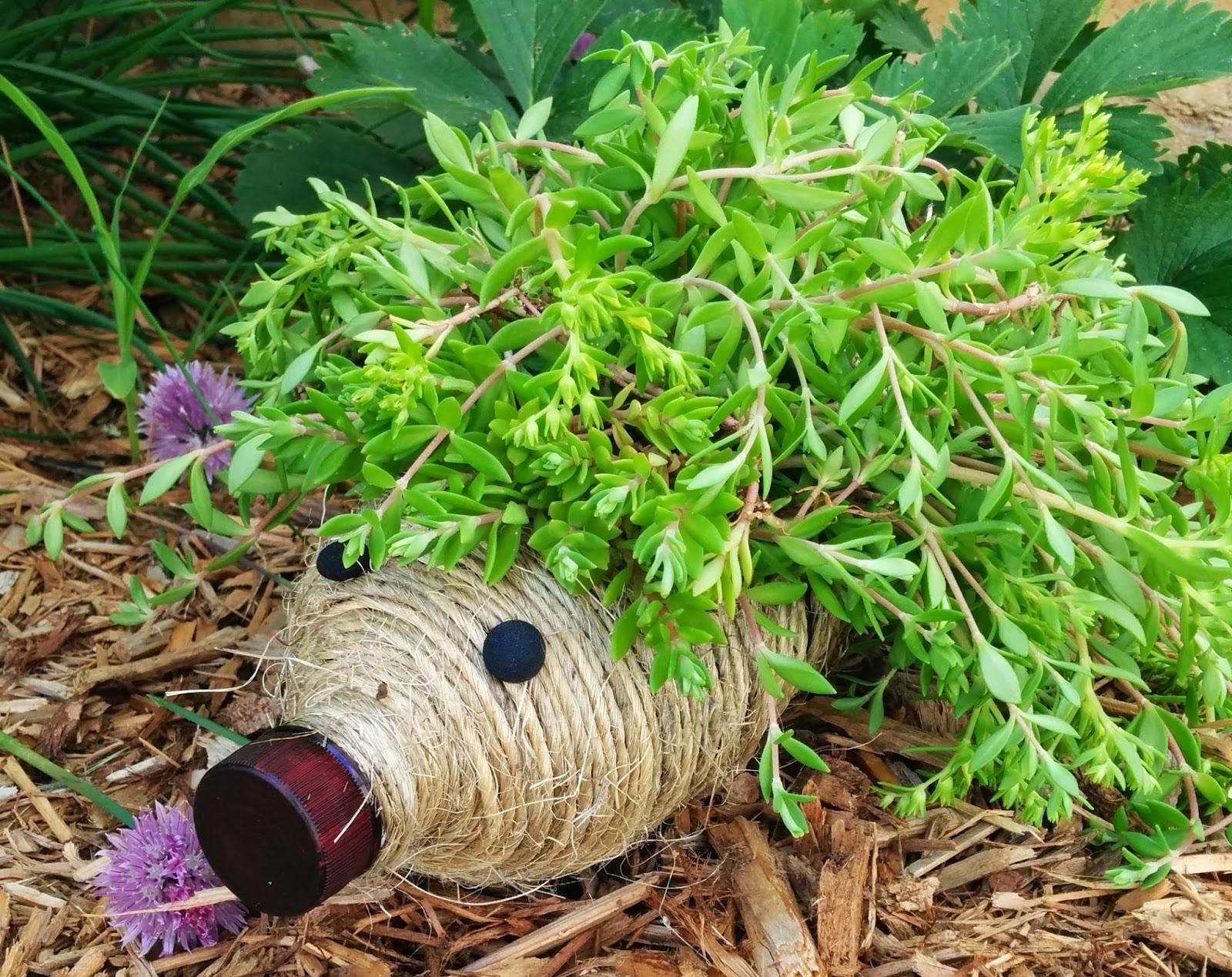 diy hedgehog planter for your garden