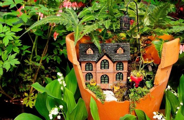 Flower pots mini garden