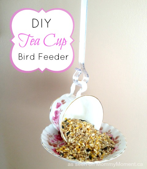 teacup-bird-feeder-7