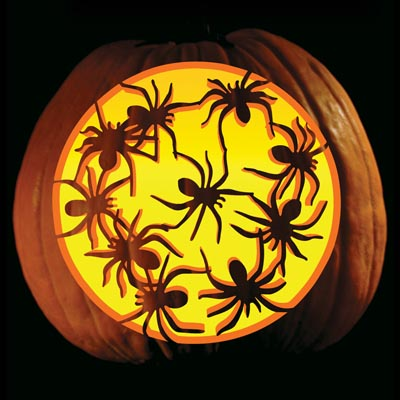 spider_pumpkin carving5
