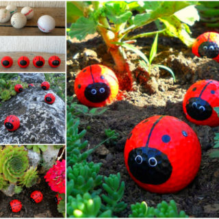 Wonderful DIY Adorable Golf Ball Ladybugs