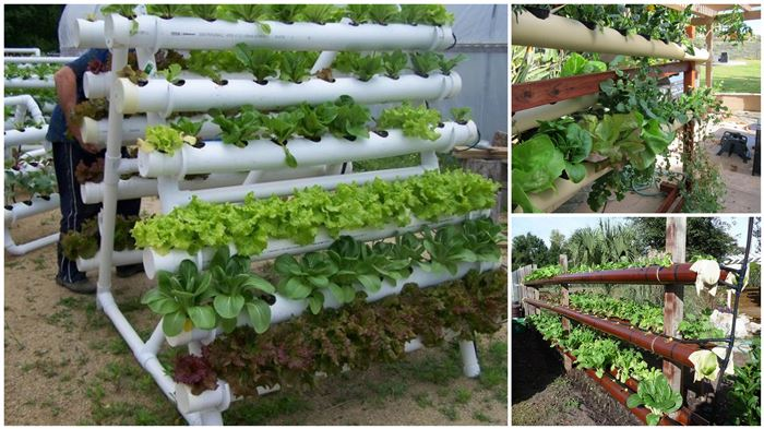 VIEW IN GALLERY Hydroponic Garden Tower Using PVC Pipes Wonderfuldiy