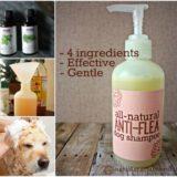 Wonderful DIY Natural Anti-flea Dog Shampoo