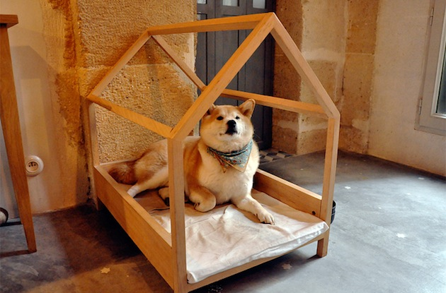Make-a-Minimalist-Pine-Crafted-Dog-Bed-2