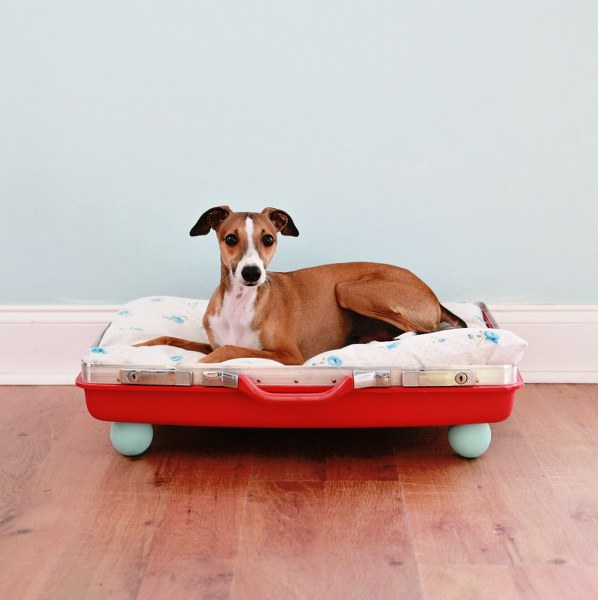 Suitcase Pet Bed  -wonderfuldiy