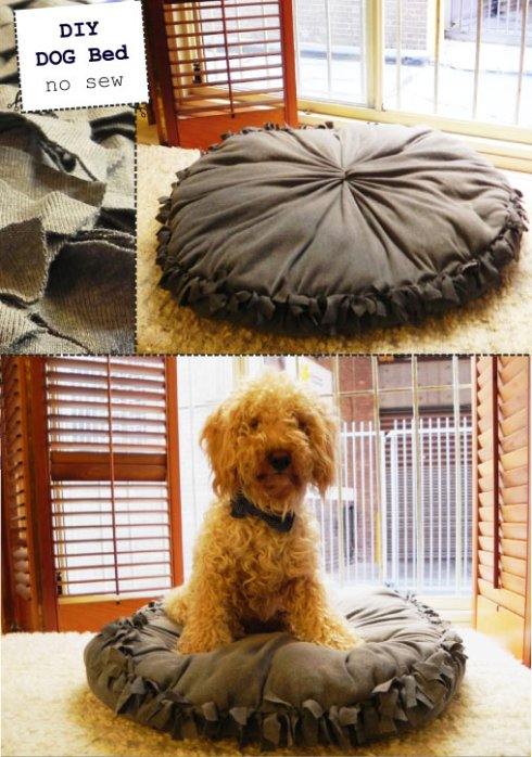 Super Easy NO SEW pet bed
