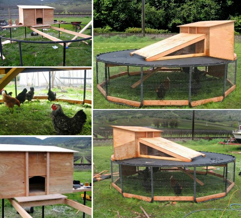 Trampoline Chicken Coop3 wonderfuldiy Wonderful DIY Recycled Chicken Coops