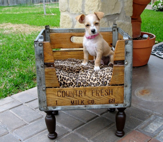 adorable crate bed