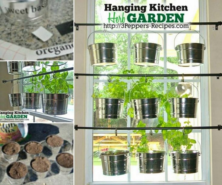 hanging kitchen herb garden Wonderful DIY Hanging Herb Garden for Kitchen