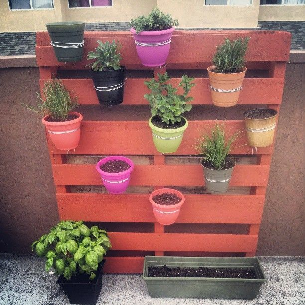 hanging pots on vertical garden