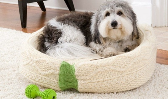 sweaters dog-bed