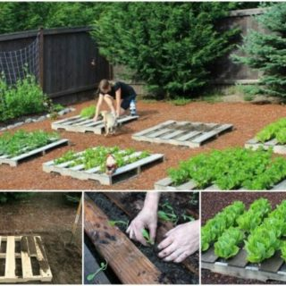Home Idea U0026 Gardening · Wonderful DIY Pallet Garden Planter
