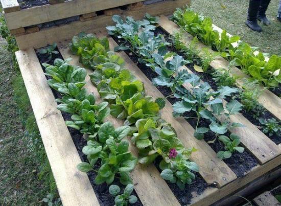 Pallet Garden Planters wonderfuldiy1 Wonderful DIY Pallet Garden Planter