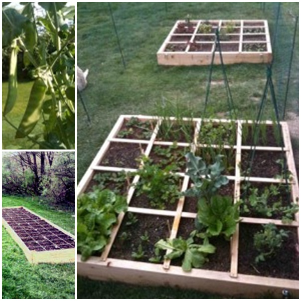 start an organic garden wonderfuldiy1 How To Start An Organic Garden