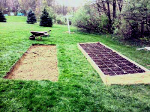 start an organic garden wonderfuldiy2 How To Start An Organic Garden