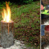 Wonderful DIY Swedish Log Candle