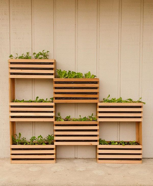 Diy Vertical Garden For Small Spaces
