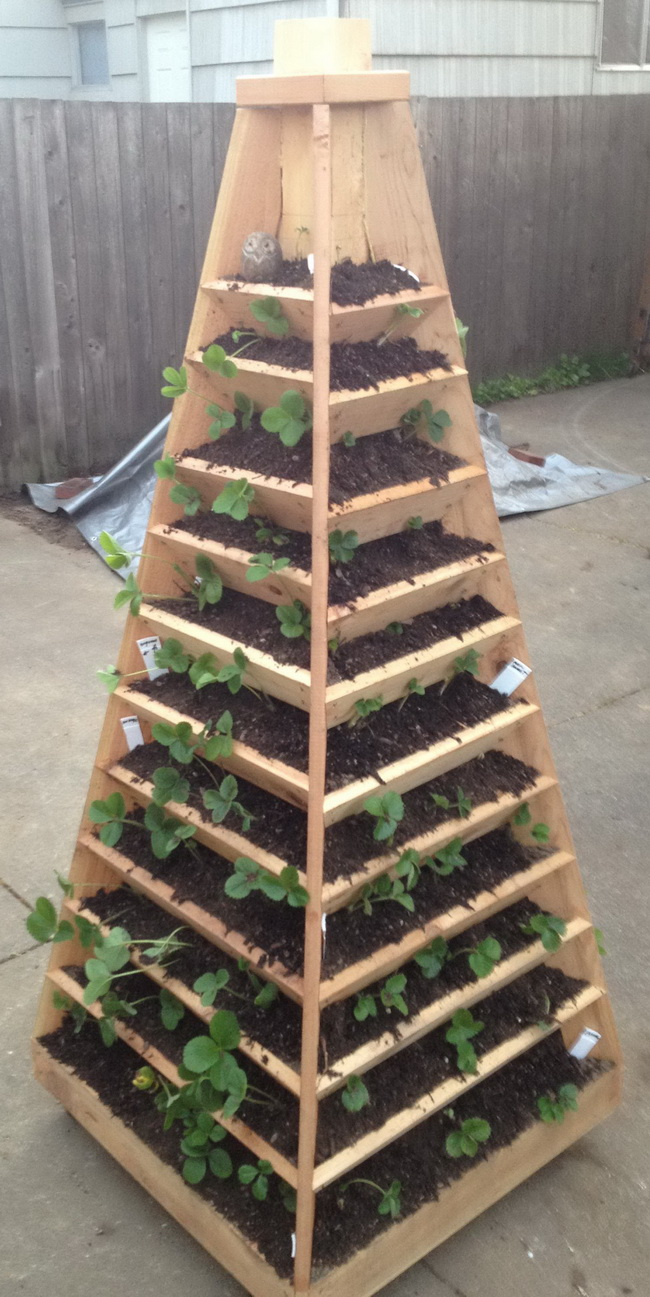 Vertical Garden Pyramid Tower 02 Vibrant DIY Vertical Garden Pyramid Planter