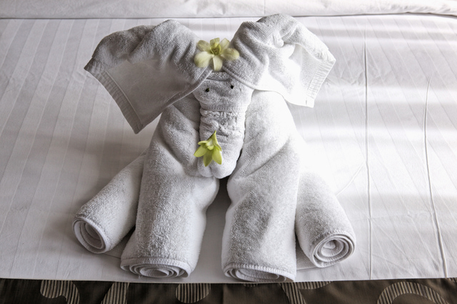Towel Origami Elephant 9 Wonderfully Simple DIY White Elephant Gifts