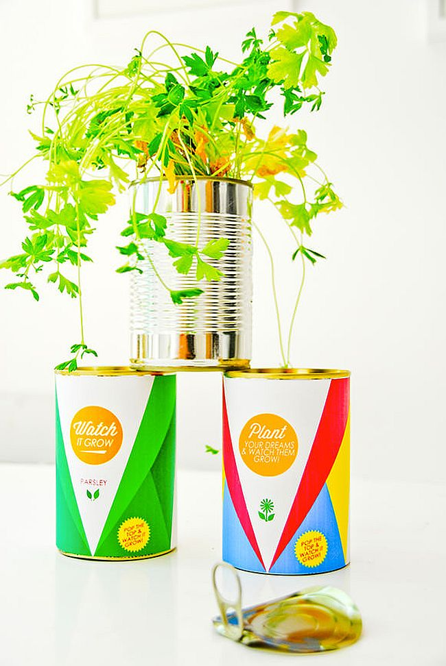 DIY herb garden from upcycled tin