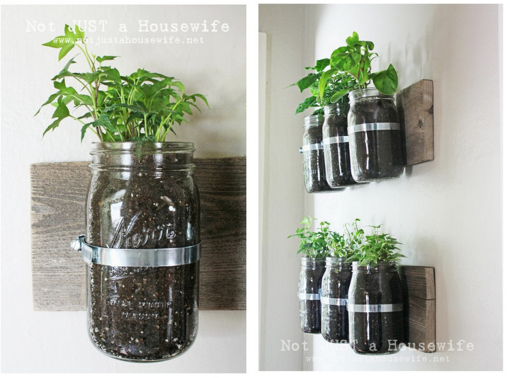 Kitchen veggies mason jar planters 6 Cool Ways to Make Use of Mason Jars