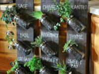 Mason Jar Indoor Herb Garden 200x150 The Perfect Indoor Gardening Ideas