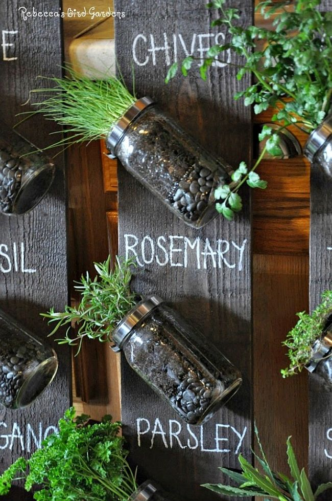 Mason jar herb garden DIY idea for your kitchen
